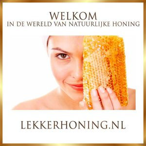 logo_home lekker honing